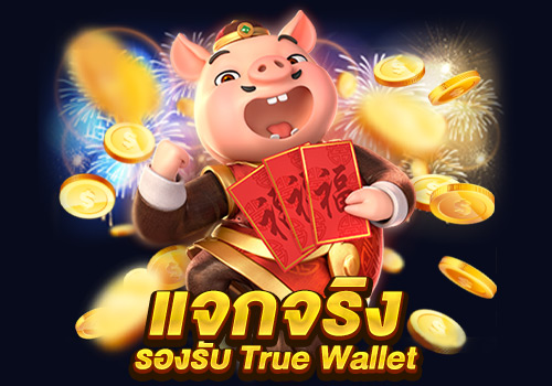 ฝากง่ายๆ รองรับ True Wallet